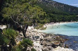 playas-paguera-strand